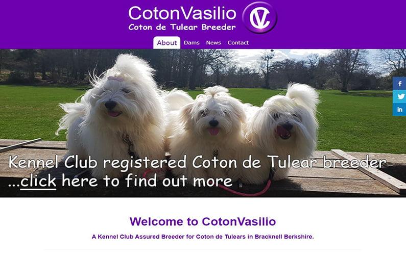 CotonVasilio Website