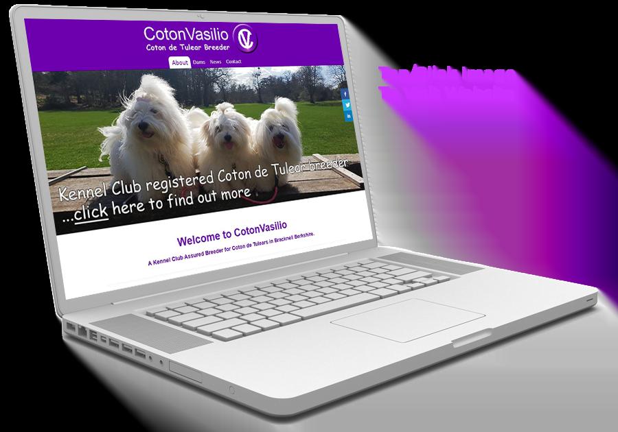 Link to CotonVasilio Website